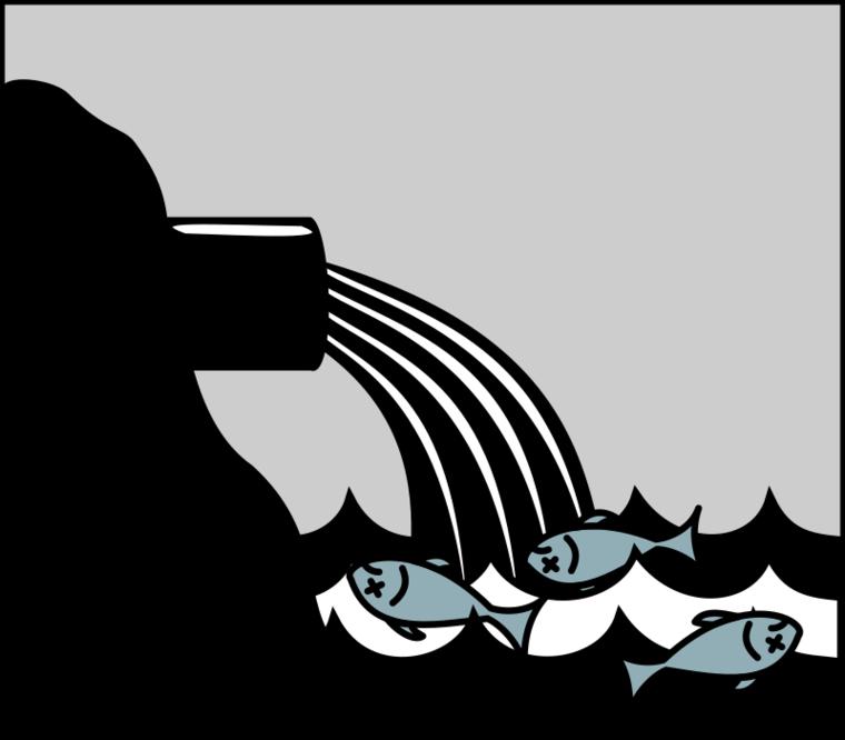 Dead Fish Clipart-Dead Fish Clipart-8