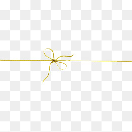 decorative butterfly line, Decoration, G-decorative butterfly line, Decoration, Gold Line, Bow PNG Image and Clipart-16