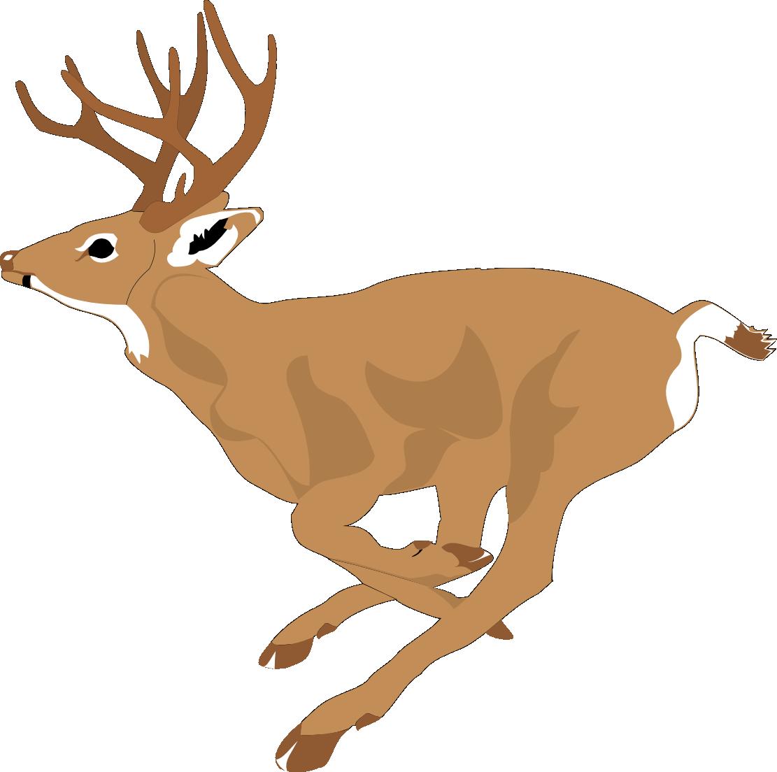 Deer Clipart -deer clipart -1