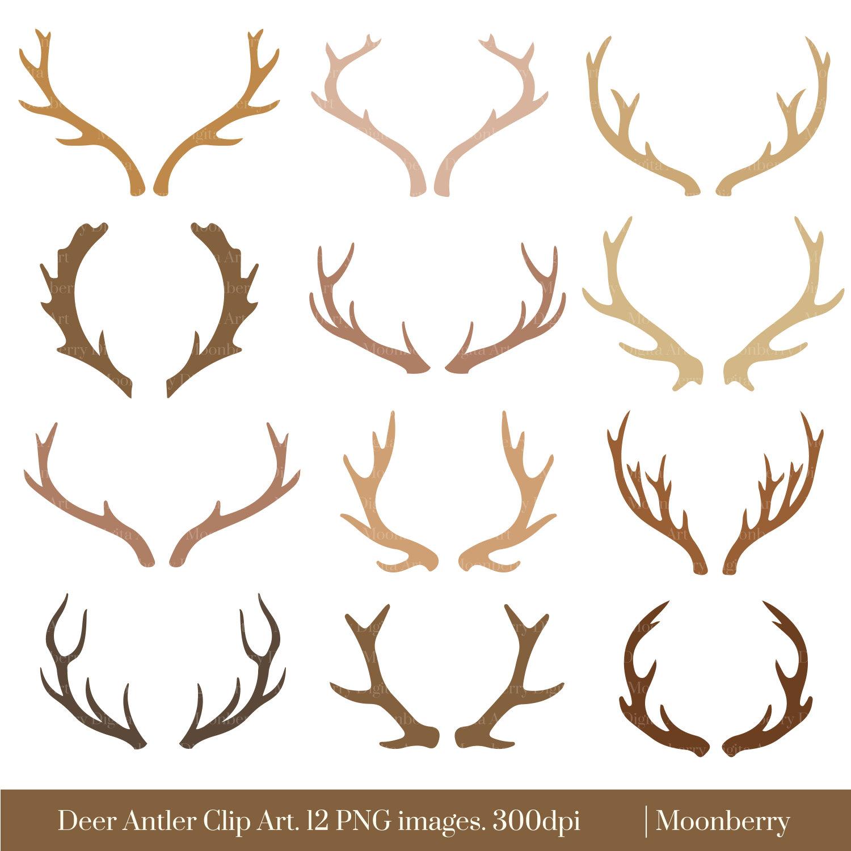 Deer Antler Clipart Deer Horns Clipart Deer Antlers Horn Clipart