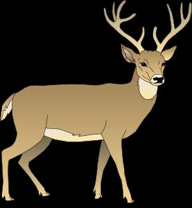 Deer Clip Art-Deer Clip Art-4