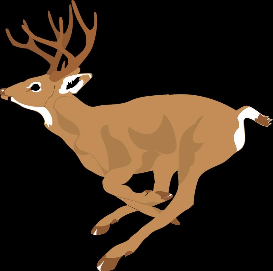 Deer clipart 2