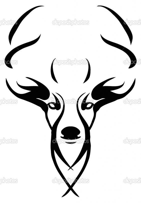 Deer Skull Drawings   images of deer skull clip art pictures wallpaper