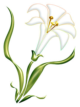 Easter Lily Clipart