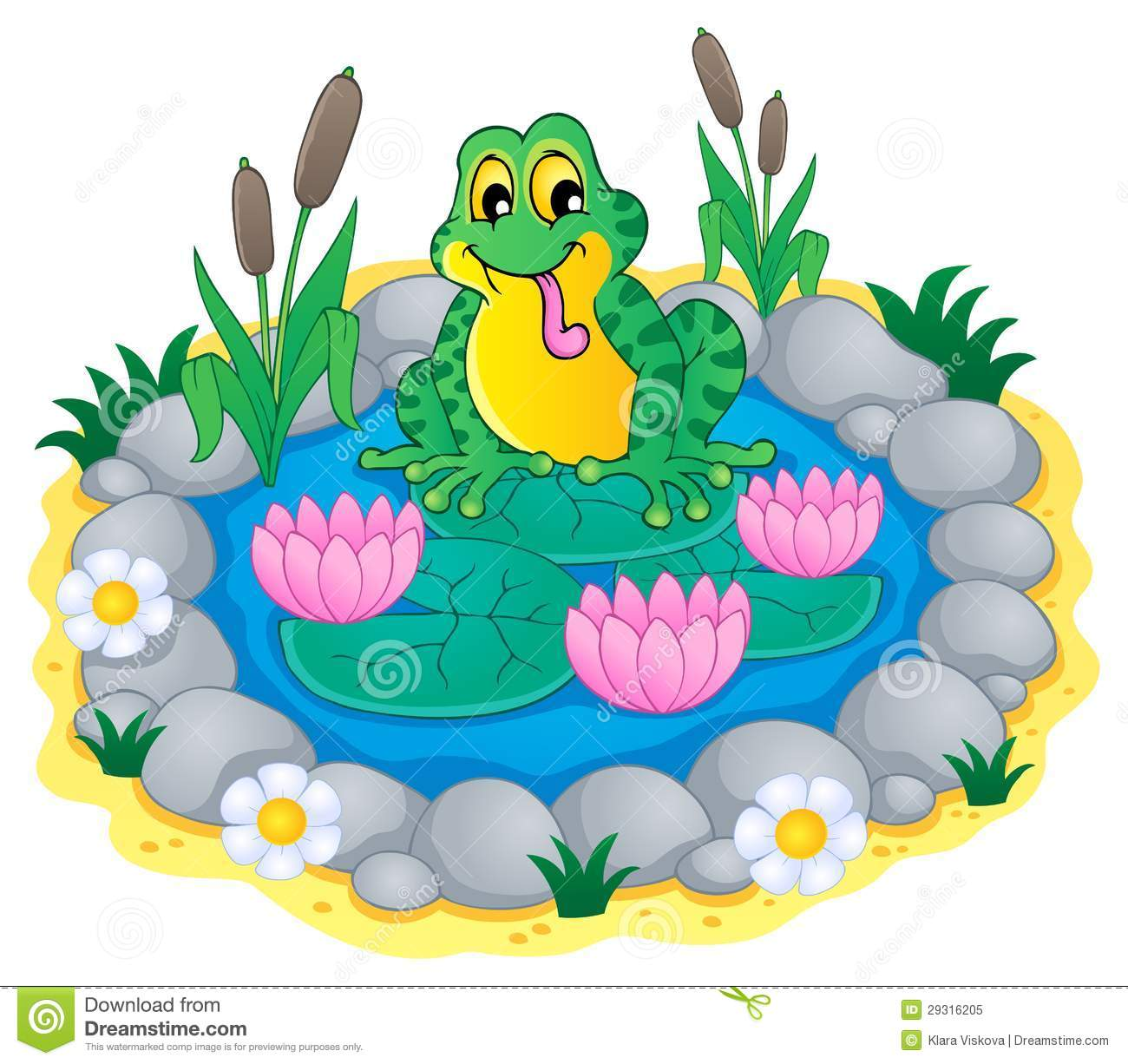 Displaying 18 Images For Pond Ecosystem Clipart