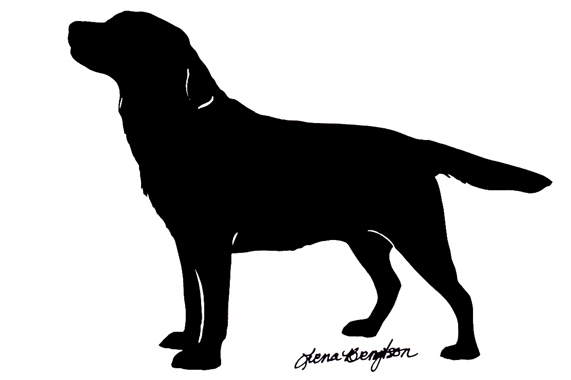 Displaying Images For Maltese Puppy Silhouette