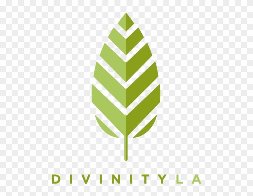 Divinityla Bracelets - Divinity: Origina-Divinityla Bracelets - Divinity: Original Sin 2 #179616-13