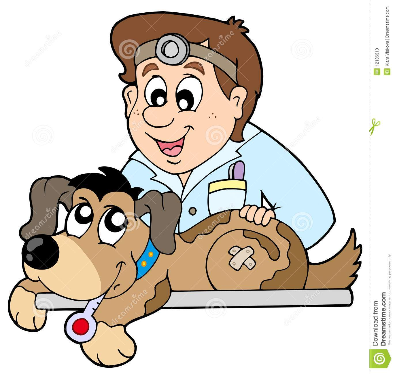 Dog at veterinarian Stock Photo-Dog at veterinarian Stock Photo-2