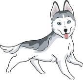 Dog breeds u0026middot; Siberian Husky-Dog breeds u0026middot; Siberian Husky-14