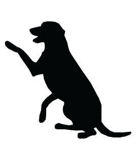 Dog Clip Art Dog Photos Pictures Images -Dog Clip Art Dog Photos Pictures Images And Art-5