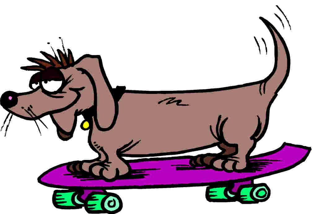 Dog funny dog graphics