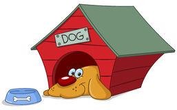 Dog In Doghouse Stock .-Dog in doghouse Stock .-14