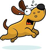 ... dog running away ...