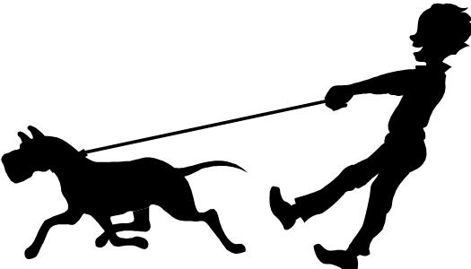 Dog Walk Paseo De Perro .