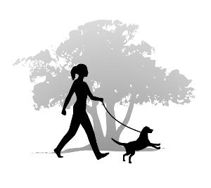 Dog Walking by Insured u0026amp; Bonded -Dog Walking by Insured u0026amp; Bonded Professionals-13