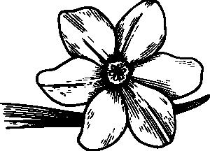 ... Dogwood Clipart - clipartall u0026middot; Flower 19 Clip Art - vector clip art online, royalty .