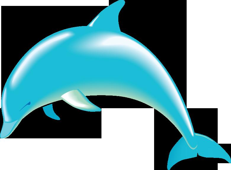 Dolphin Clip Art-Dolphin Clip Art-11