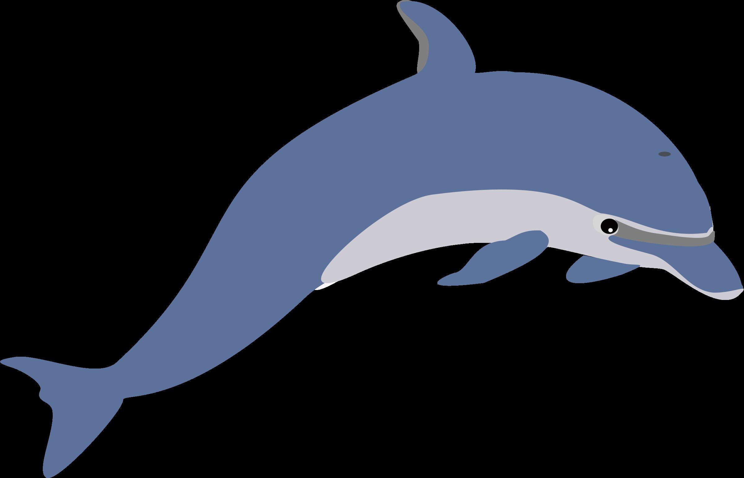 Dolphin Clip Art-Dolphin Clip Art-4