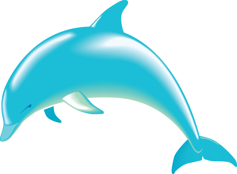 Cute Dolphin Aquatic Marine M