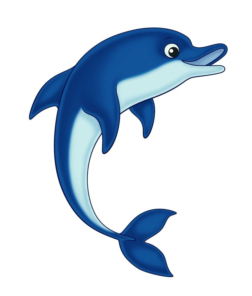 Dolphin Clip Art | Are you a Dolphin, Dragon, Ant or Whale?