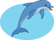 dolphin jumping out of water. - Dolphin Clip Art
