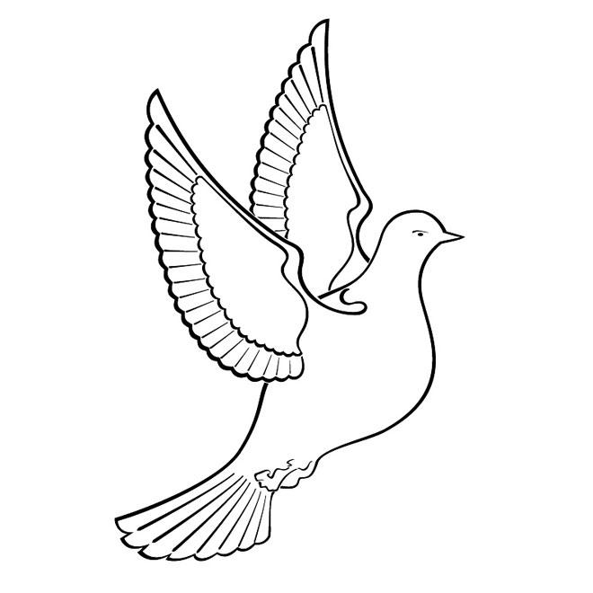 Dove Clip Art #8917