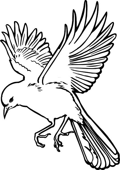 dove drawings | dove clip art | Tatts | Pinterest | The ou0026#39;jays, Bird outline and Bird drawings