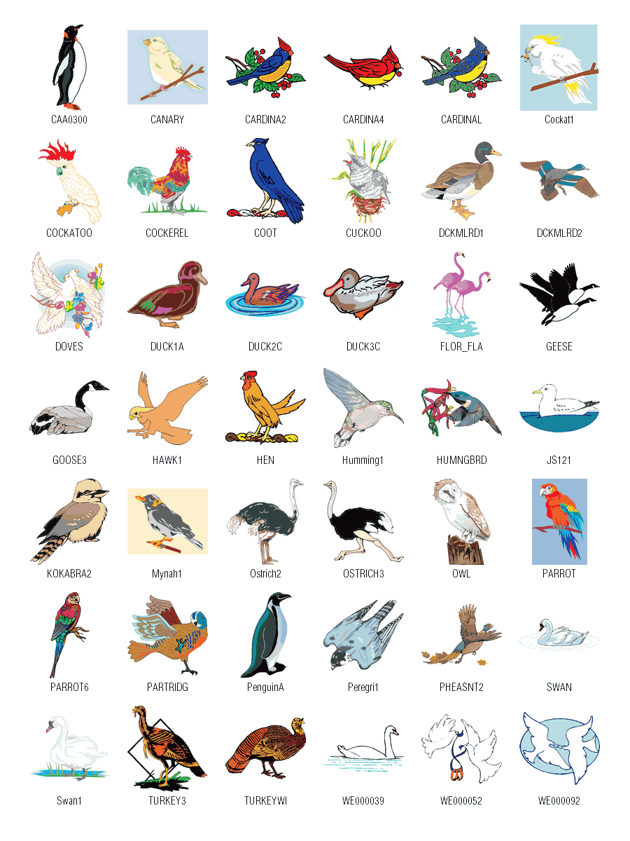 Download Birds Free Vector . - Free Clipart Gallery