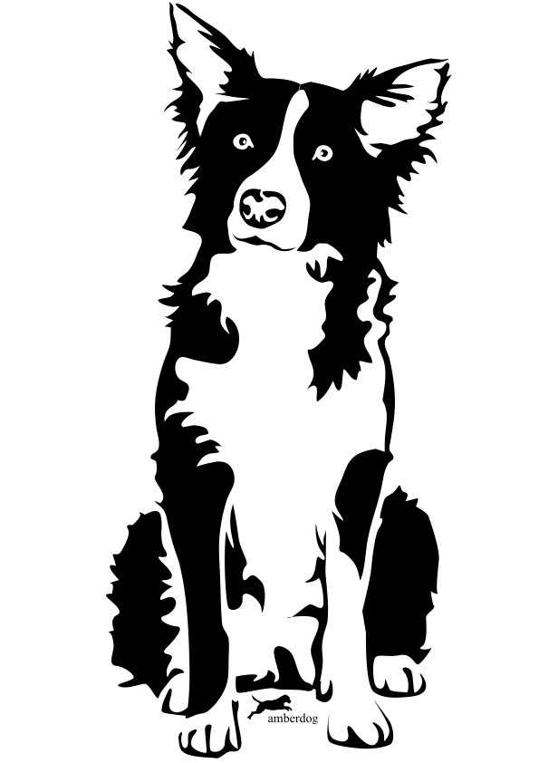 Download Red Border Collie Clipart