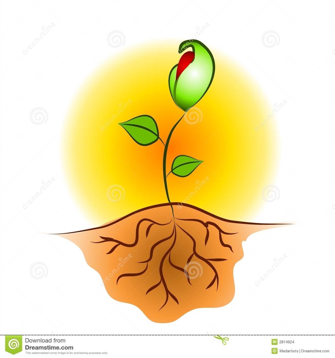 Download Seed Roots Clipart-Download Seed Roots Clipart-2