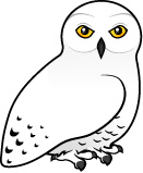 Download Snowy Owl Cartoons Clipart-Download Snowy Owl Cartoons Clipart-6