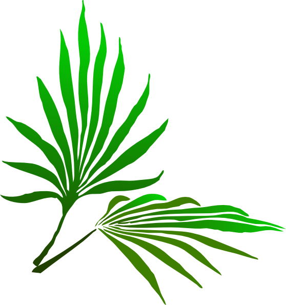 Download this image as: Download this image as: Palm Leaf Clipart