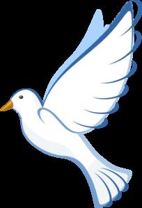 Download White Dove Clipart