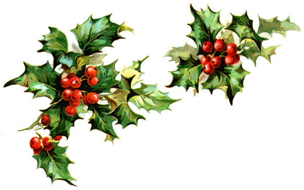 Download Winter Holly Clipart