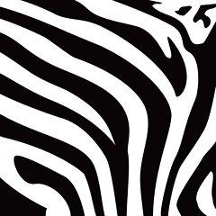 Download Zebra Print Clipart