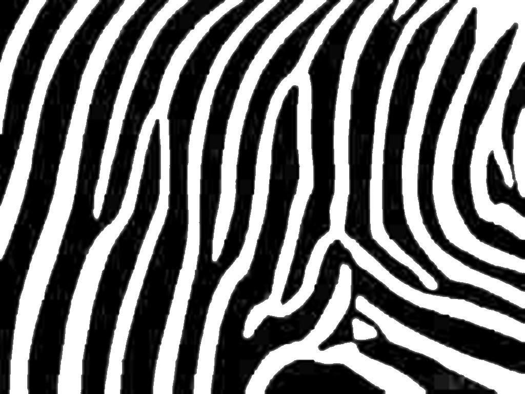 Download Zebra Print Clipart. Zebra