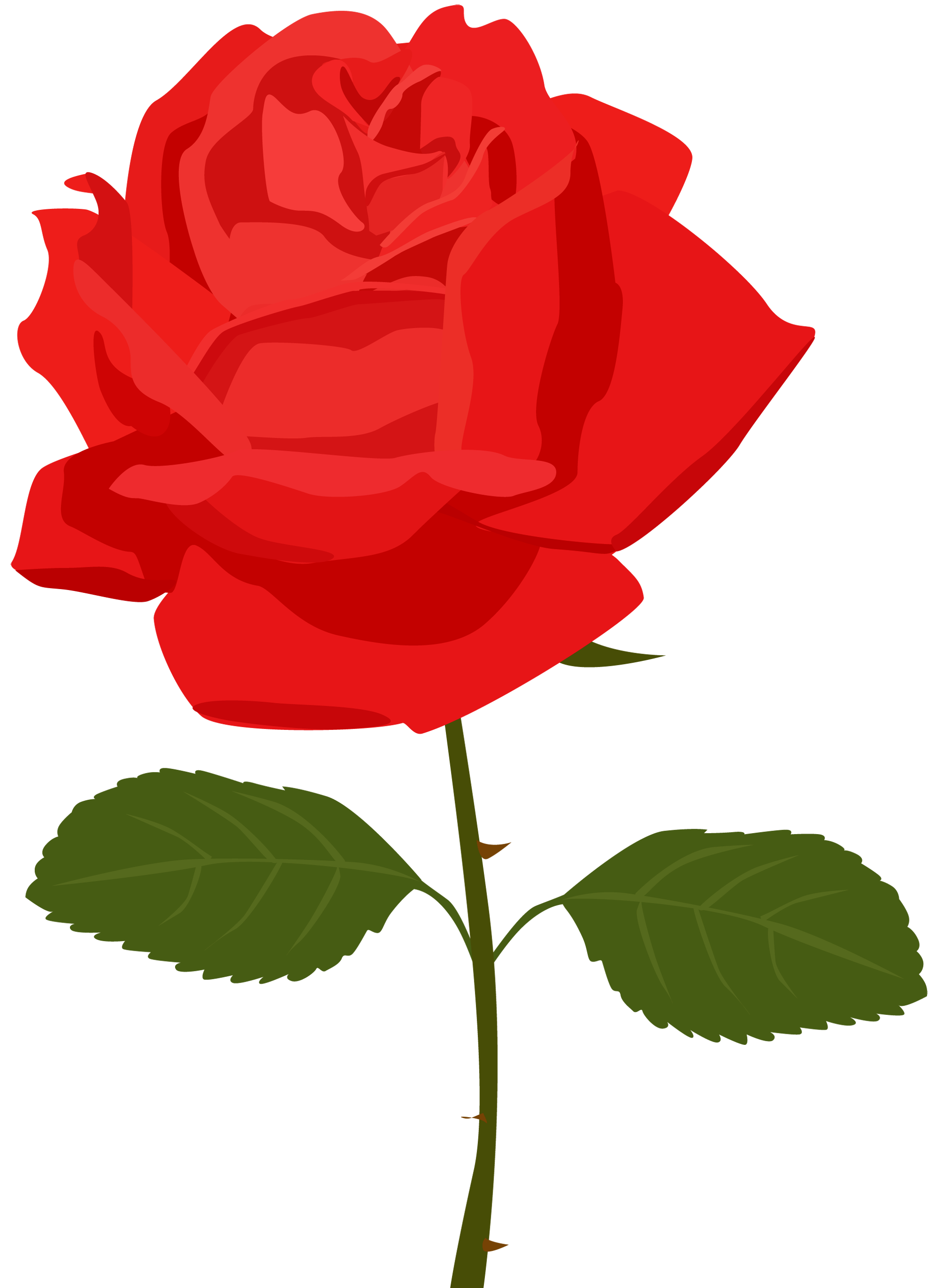 Dozen Red Roses Clipart 10 Red