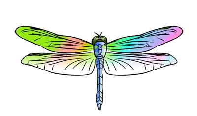 Dragonfly Clip Art-Dragonfly Clip Art-1
