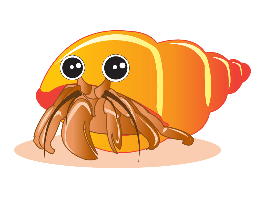 Draw a Hermit Crab-Draw a Hermit Crab-2