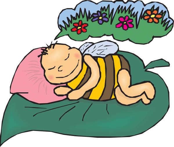 Dreaming Bee Clip Art At Clker Com Vector Clip Art Online Royalty