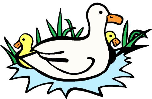 Ducks clip art - Clip Art Ducks