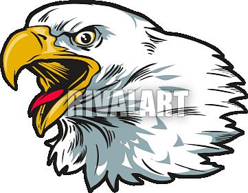 eagle head clipart