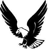 eagle-BW