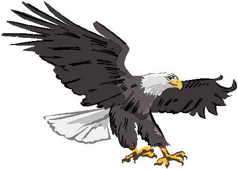 Eagle clip art 3 - Free Eagle Clip Art