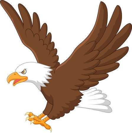 Cartoon Eagle Flying-Cartoon eagle flying-7