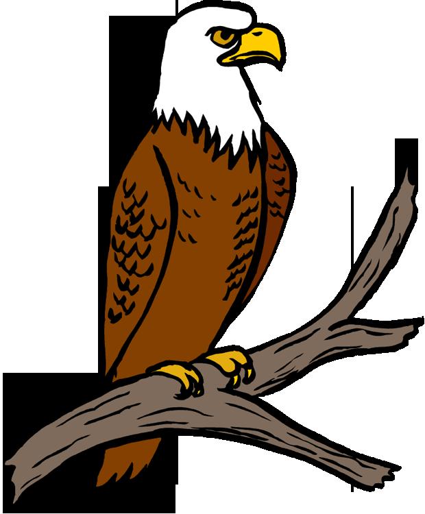 Clipart Eagle-clipart eagle-8