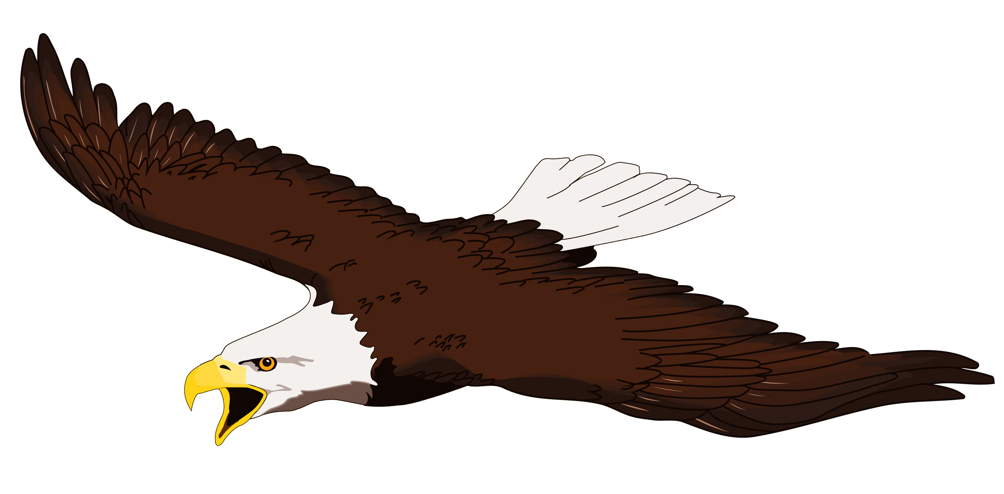 Eagle clipart free clipart