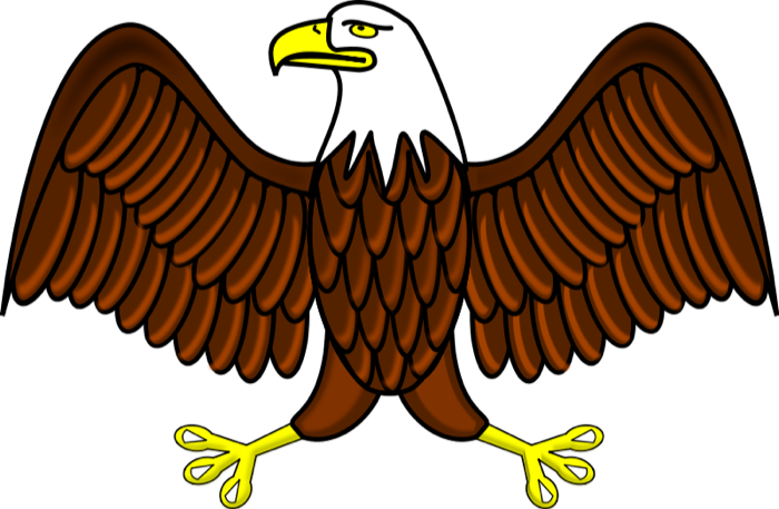 Eagle clipart free graphics of eagles