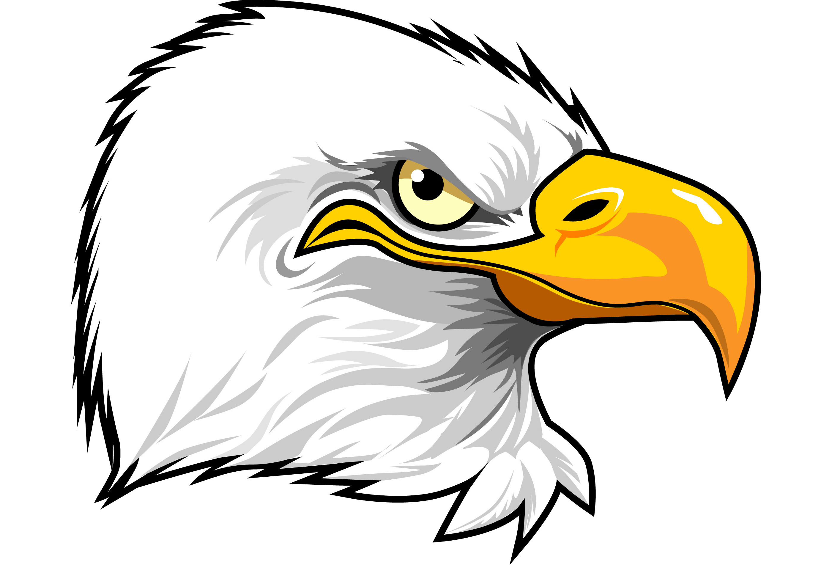 Eagle Eye Clipart