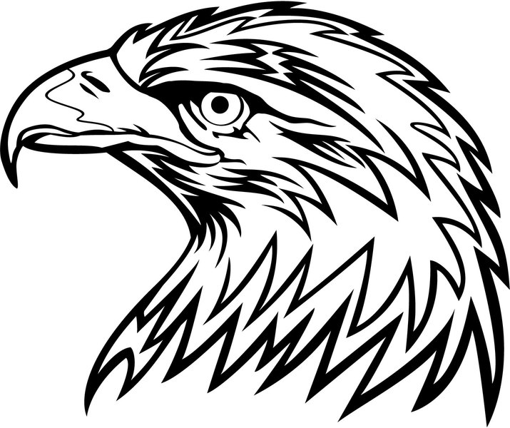 Eagle Head Vector 6